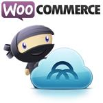 WooCommerce: un plug-in con un futuro envidiable.